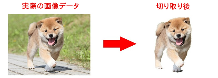 画像の切り抜きは、CorelDRAWに付属する「Corel PHOTO-PAINT」を使用することで加工が可能です。
